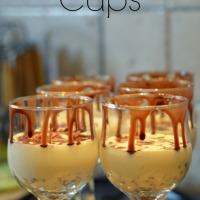 No Bake Cheesecake Cups